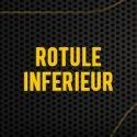 Rotule Inférieure